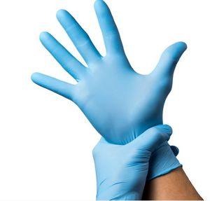 316281662-202 - Nitrile Gloves - thumbnail