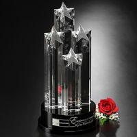 "153378163-133 - Constellation Award 14"" - thumbnail"