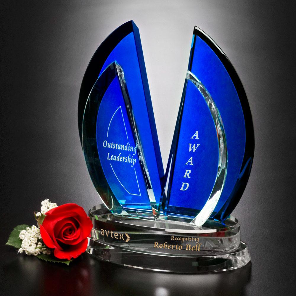 "324592495-133 - Flight Indigo Award 9"" - thumbnail"