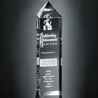 "335264774-133 - Buckingham Award 10"" - thumbnail"