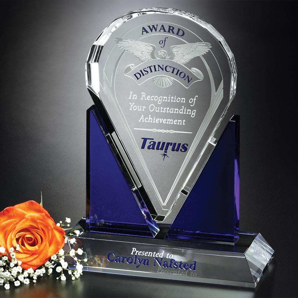 "362554758-133 - Distinction Award 8-1/2"" - thumbnail"