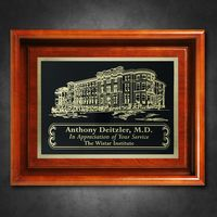 "392865321-133 - Americana Shadow Box without Glass 10"" x 12"" - thumbnail"