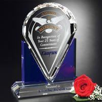 "592554766-133 - Distinction Award 10-1/2"" - thumbnail"