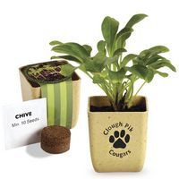 574434731-159 - Flower Pot Set w/Chive Seeds - thumbnail