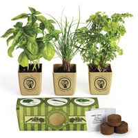 734421389-159 - GrowPot Eco-Planter Herb 3-Pack - thumbnail