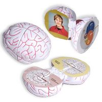 765807291-159 - Multi-Messenger Brain Photo Puzzle - thumbnail