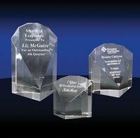 333686917-142 - Achiever Award (Medium) - thumbnail